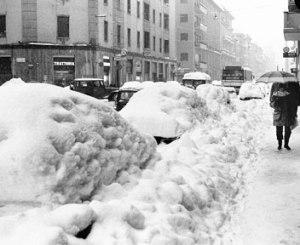 Le auto dimenticate sotto la neve