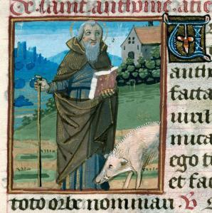 S. Antonio e il maiale a lui caro in un codice miniato